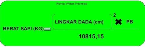 rumurs-winter-indonesia.jpg