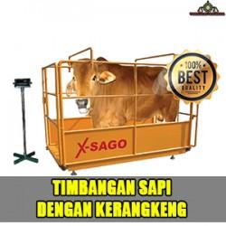 timbangan_sapi1.jpg