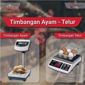 Timbangan_ayam_dan_telur.crop_.png