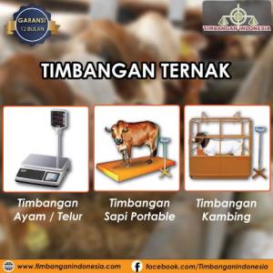 Timbangan_hewan_animal_scale.png