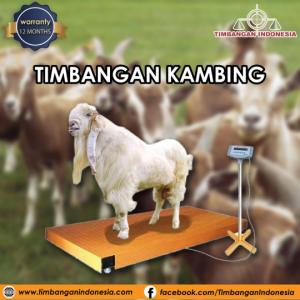 Timbangan_kambing_01.png