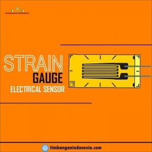 strain_gauge-01.jpg