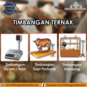 timbangan_hewan_crop_timbangan_indonesia.png